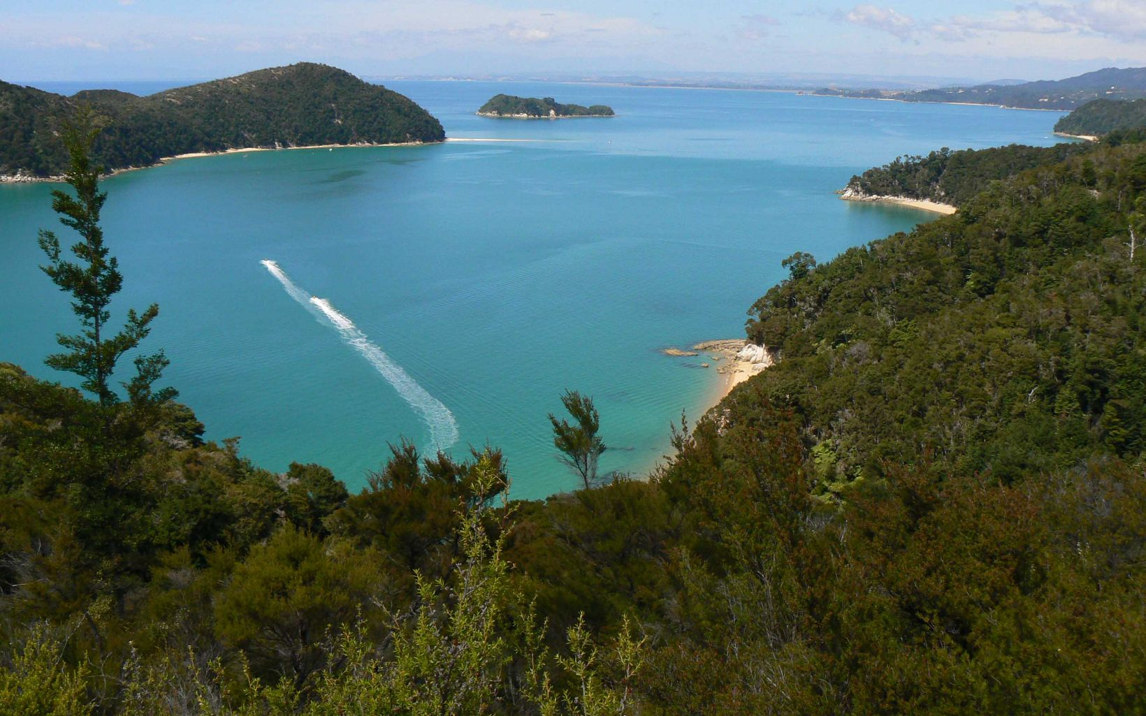 are protected and restored. Abel Tasman National Park.