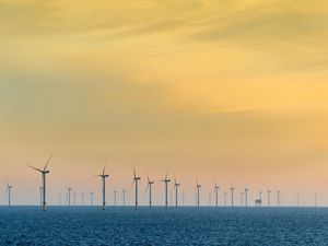 An offshore windfarm against a yellow sky