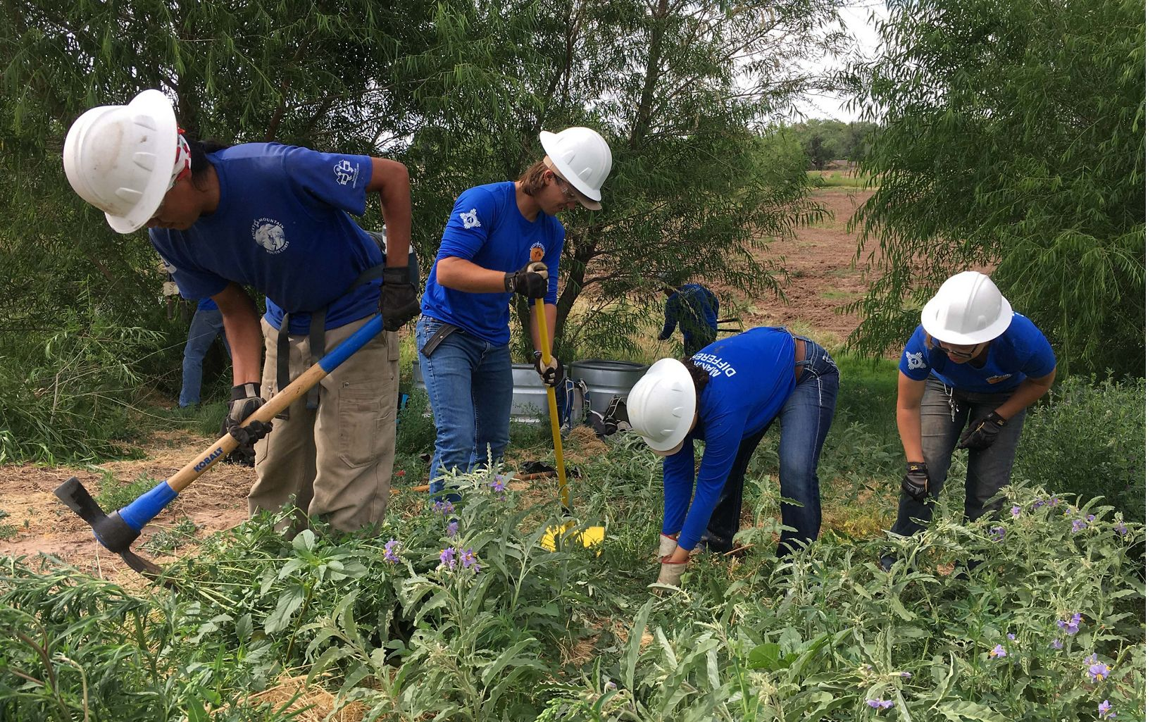 Youth restore natural arroyos in Albuquerque.