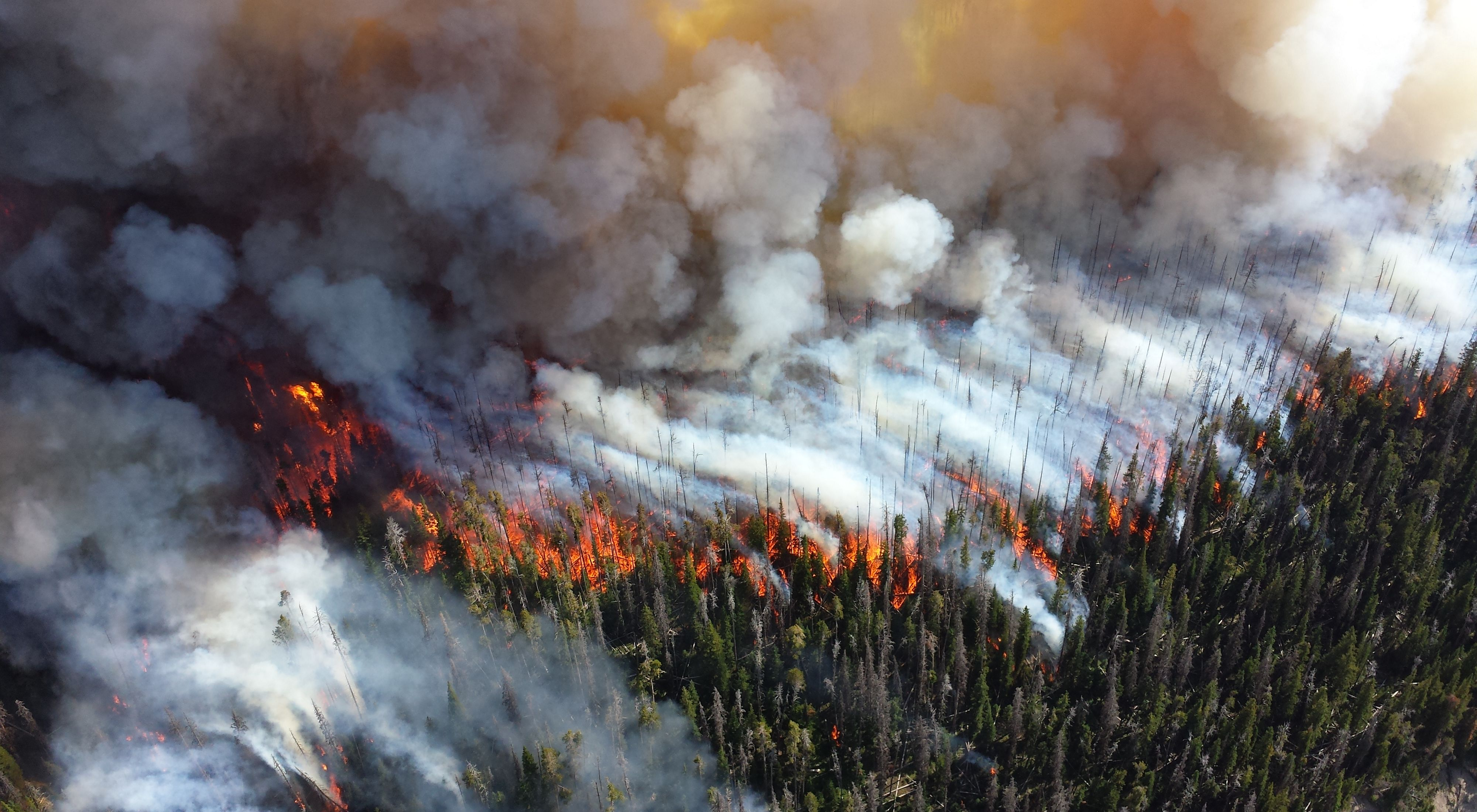 Aerial photo of a wildfire and smoke over Yellowstone National Park during the 2013 Alder Fire.