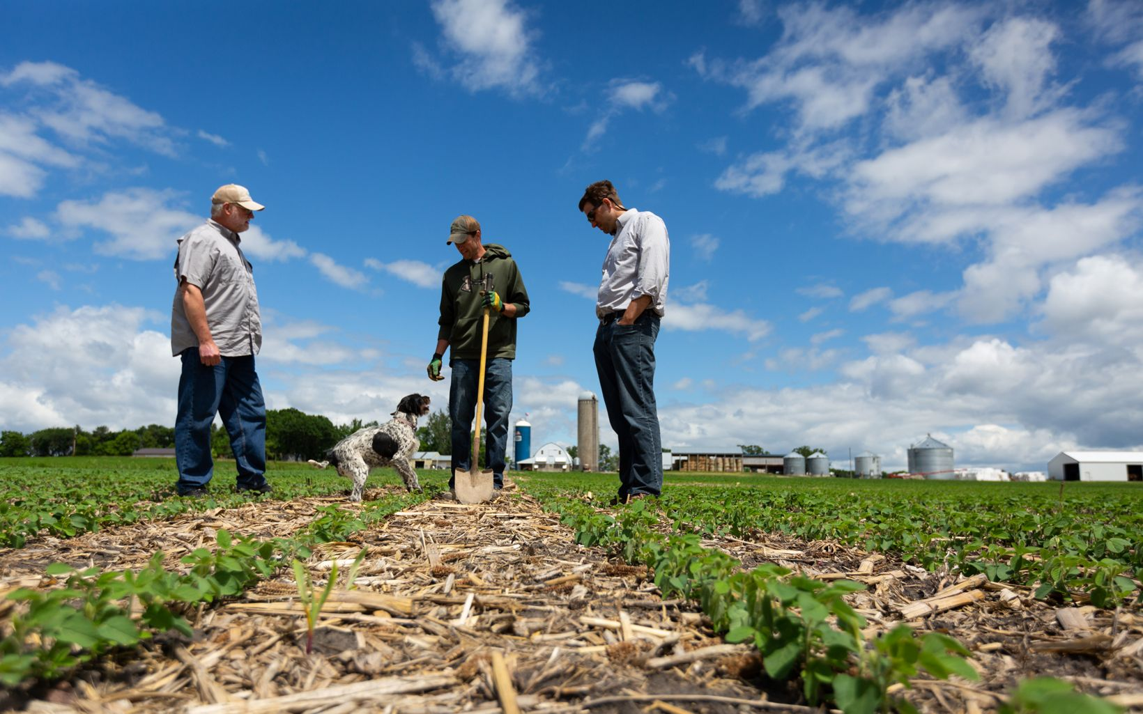 Low-till and no-till are among a suite of practices that can help farmers improve their soil health.