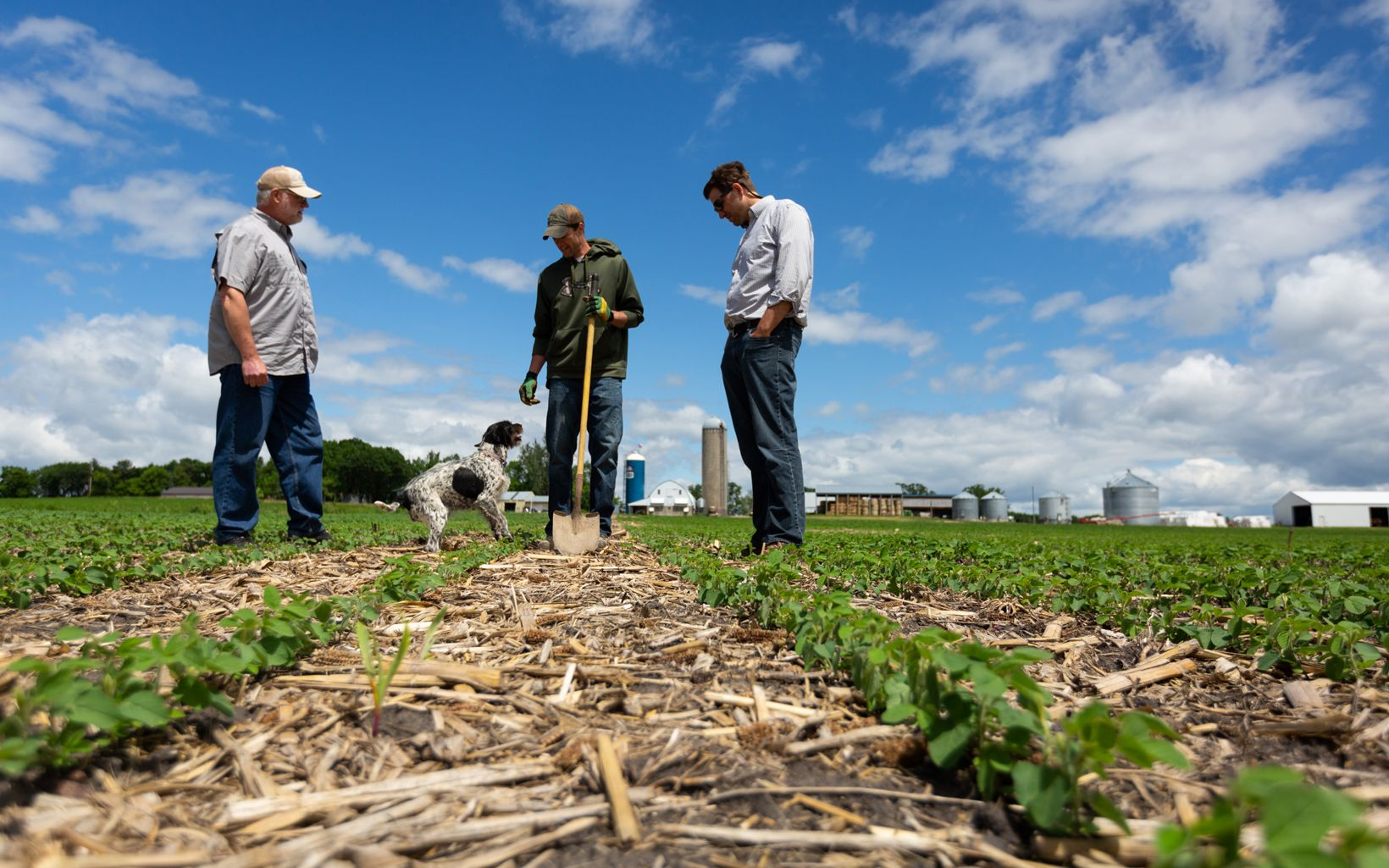 Three people and a dog standing in a no-till farm field.