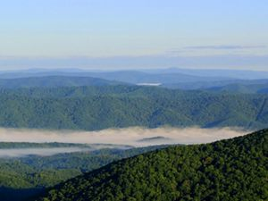 Aerial view of rolling green mountain ridge tops. A heavy bank of white fog shrouds the lower valley.
