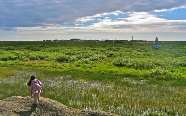 A little girl stands on a hill and looks out over a green piece of wetlands