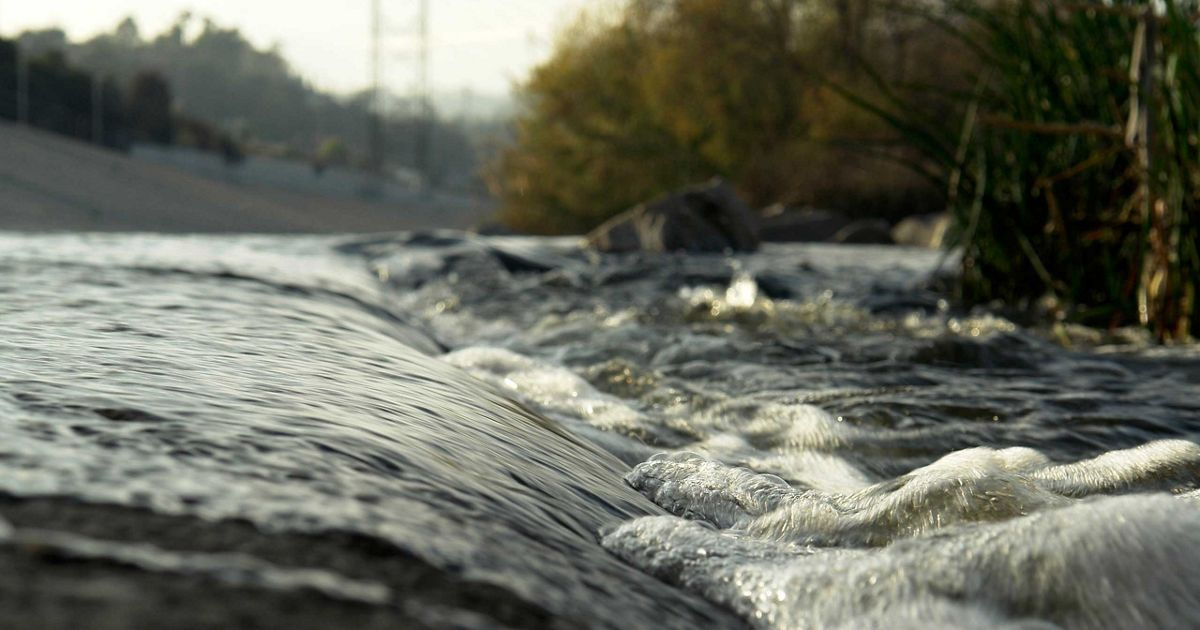 Close up of the Los Angeles River