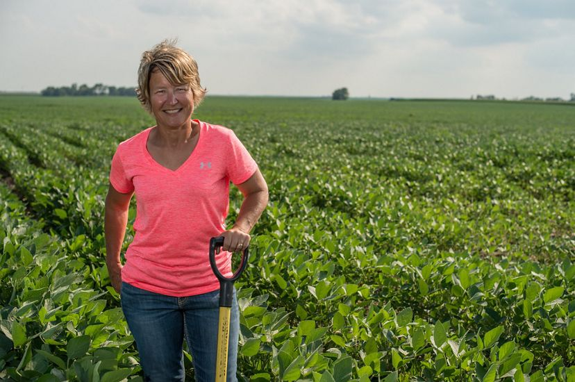 A woman in a pink shirt standing in a planted field of soybean crops.