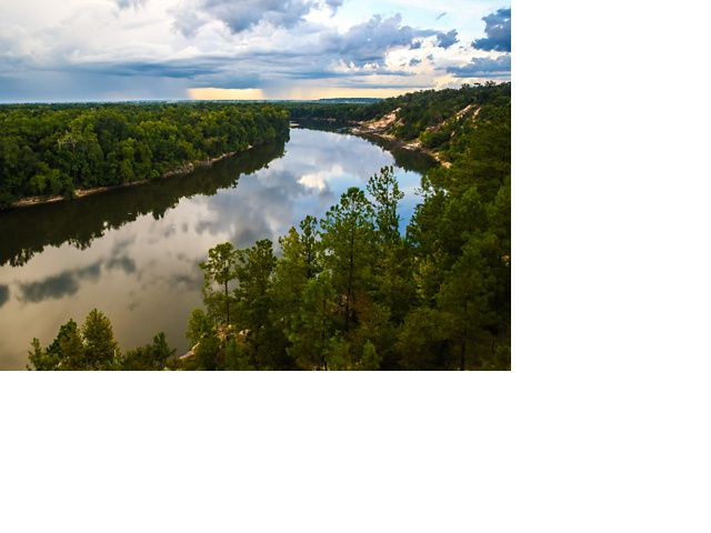 A stunning view from the bluffs of Florida's Apalachicola Bluffs and Ravines Preserve