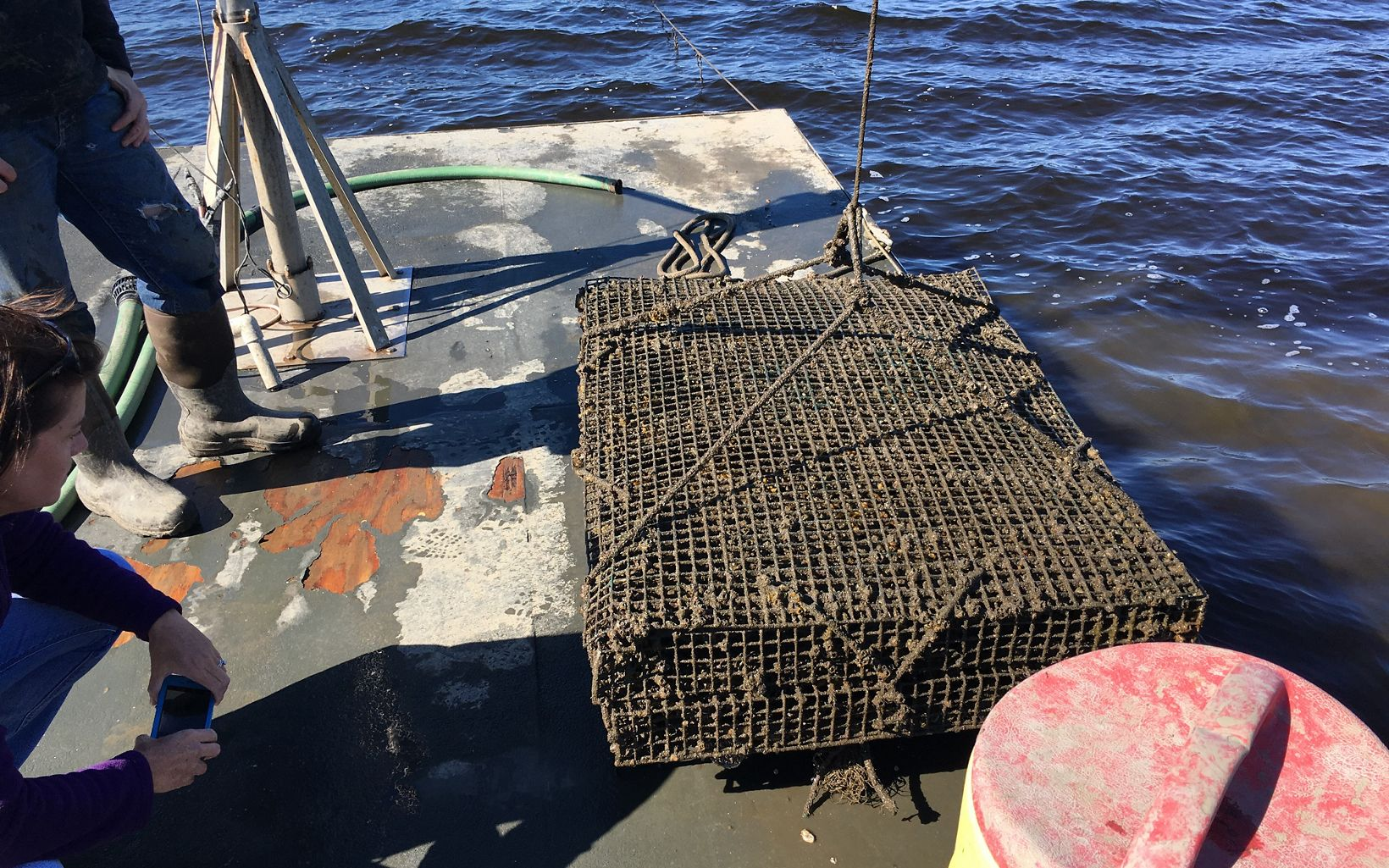 These oyster cages rest on the bottom of the river or bay.