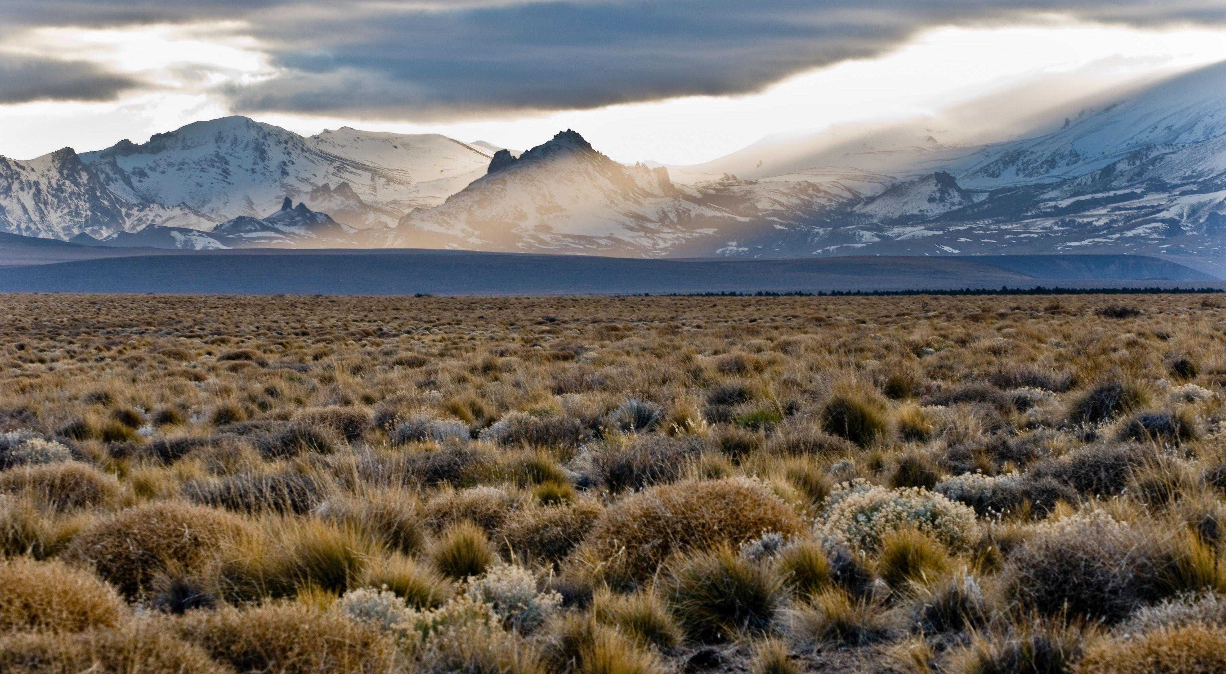 Grasslands around San Martin de los Andes, Argentina.