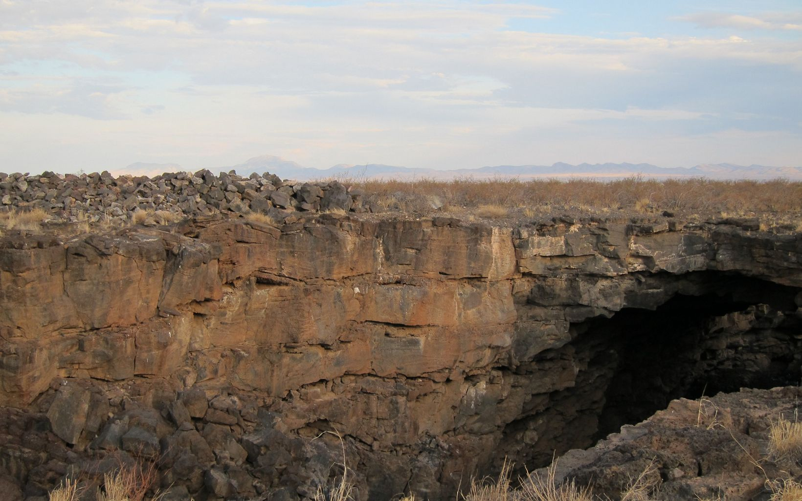 Eight million migratory bats use the Jornada Bat Caves as a stop-over site.