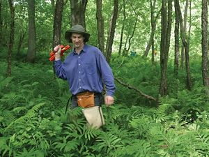 A scientist measures trees in a floodplain forest.