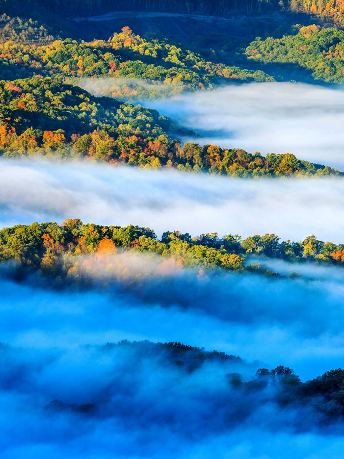 Forested mountains with clouds flowing through it.