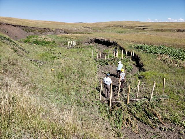 Photo of 3 ranchers installing riparian improvement structures.