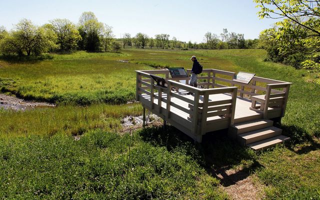 A platform at the Big Darby Creek Headwaters Preserve overlooks the creek restoration.