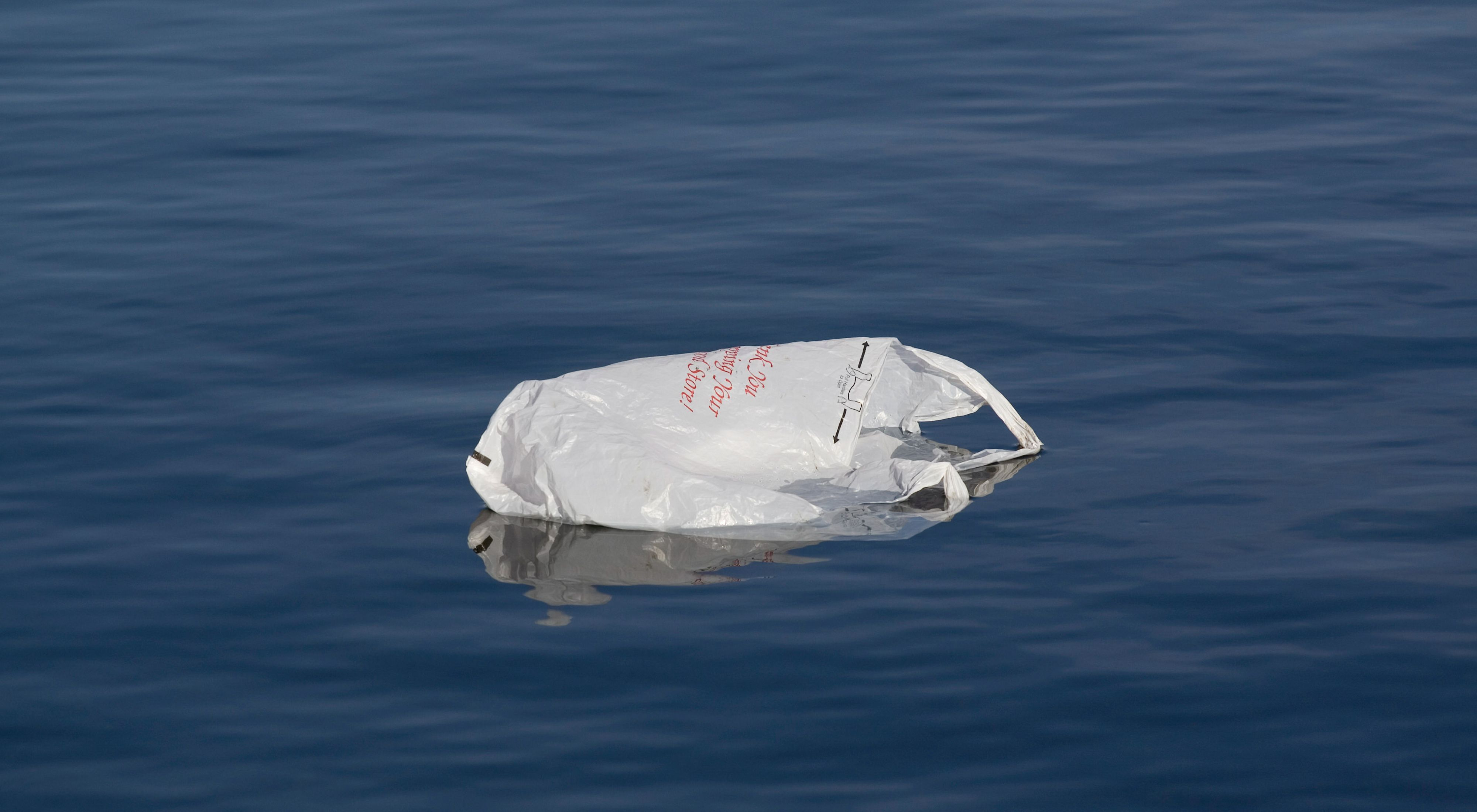 A plastic bag floating in water.