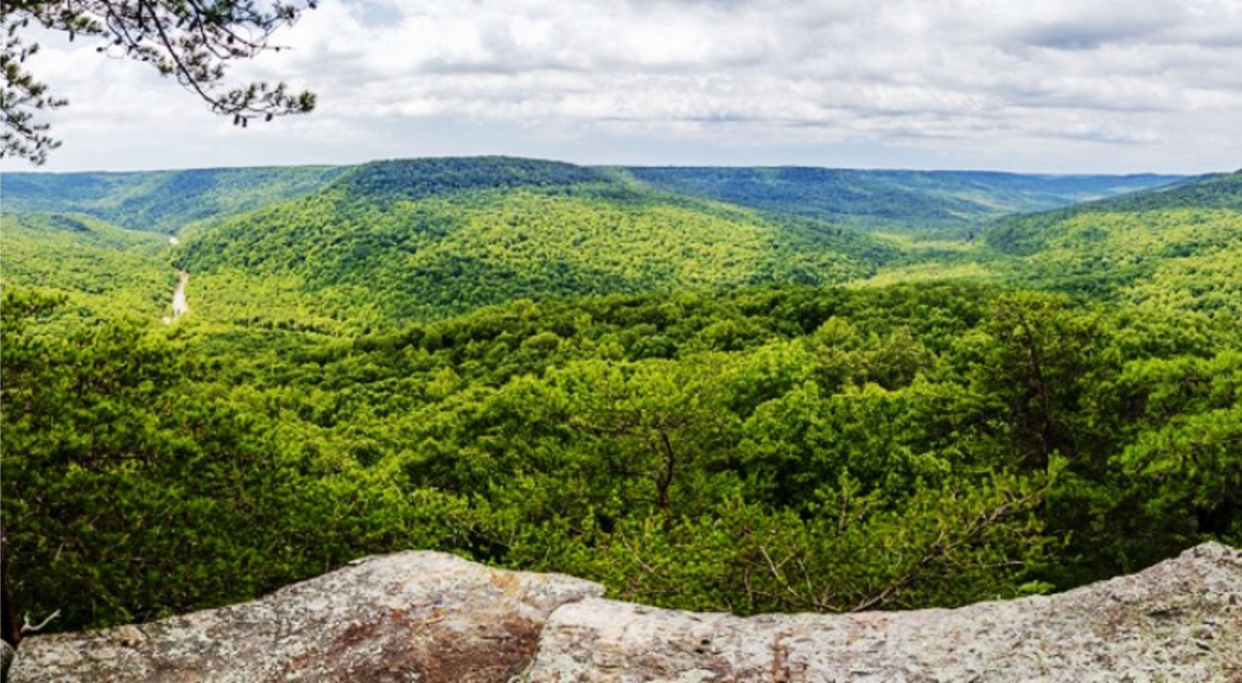 A rock outcrop looks out on a dense, green forested valley.
