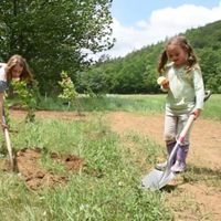 Iris and Rose volunteer planting American elm trees at the Ballou Farm in Swanzey, New Hampshire