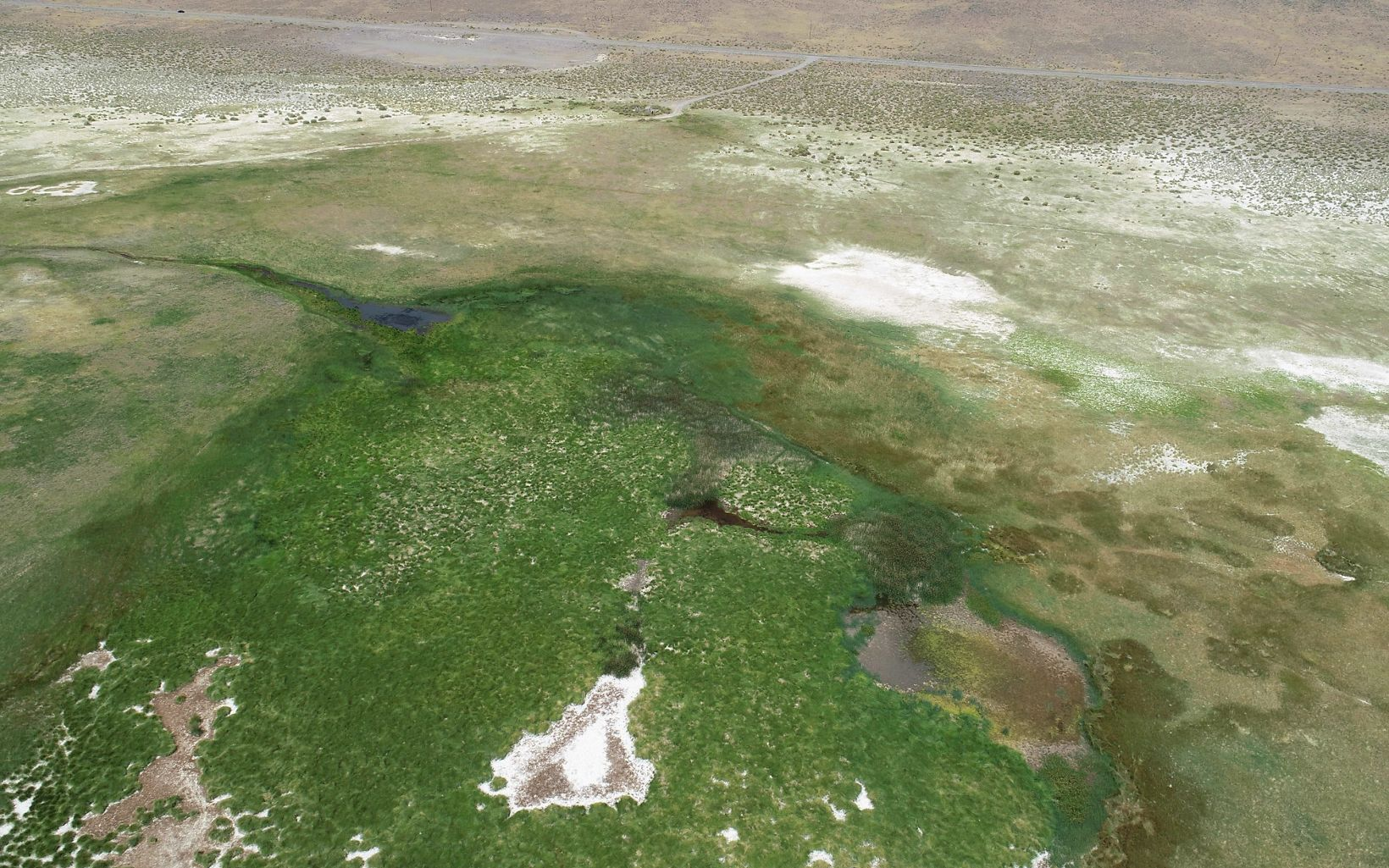 Aerial photo of Baltazor Hot Springs, one of many hot springs that occur throughout Nevada.