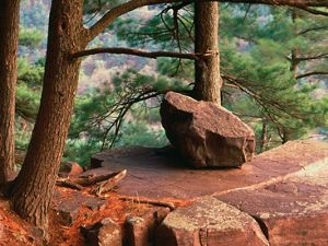 A red boulder on a forested rocky outcrop.