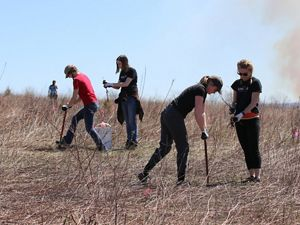 Volunteers dig holes to plant trees on a dusty prairie.
