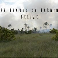 Screen capture from video showing highlights from the 2019 Wildfire Suppression Workshop held February 4-16 in Deep River Forest Reserve, Belize.