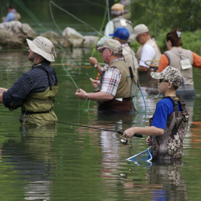 Line of fisherman flyfishing in spring branch, Bennett Springs State Park