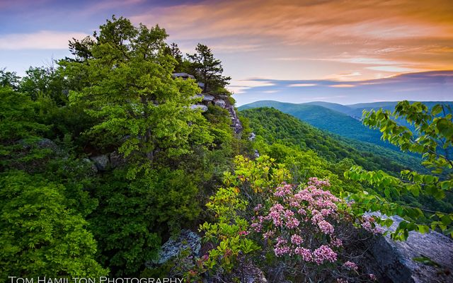 This treasure in the George Washington National Forest provides a wonderful view of the surrounding valleys.