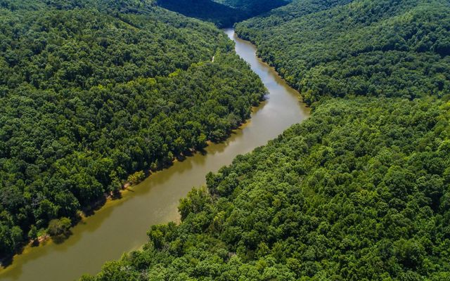 TNC is working to expand the Big South Fork in southeastern Kentucky.