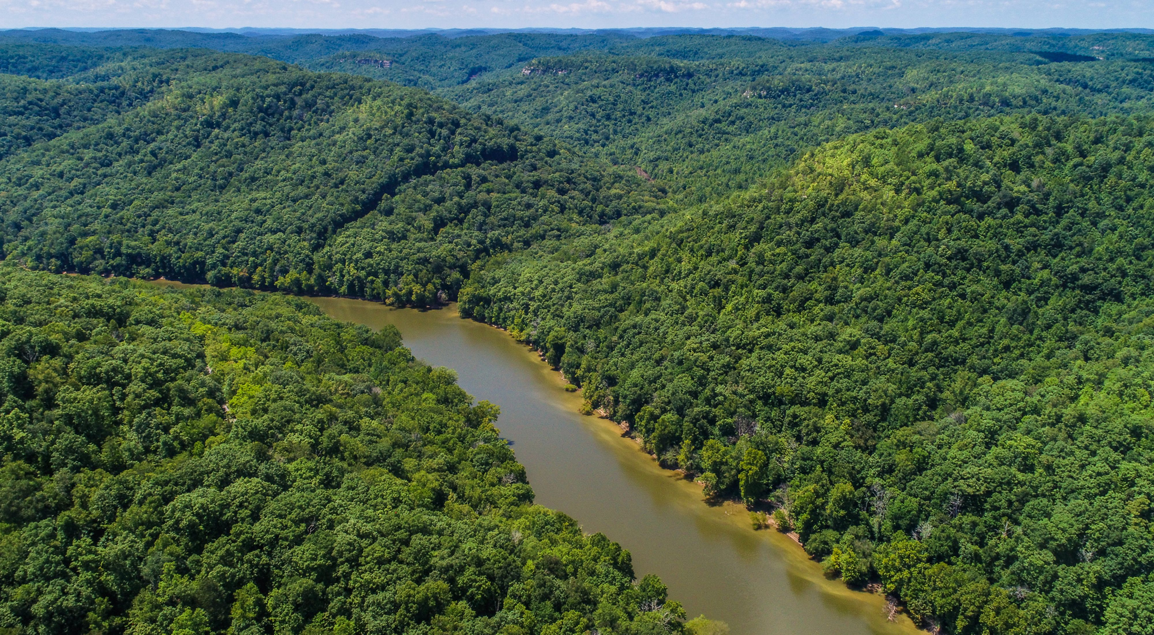 Aerial view of the Big South Fork River in Kentucky with dense forests along its banks.