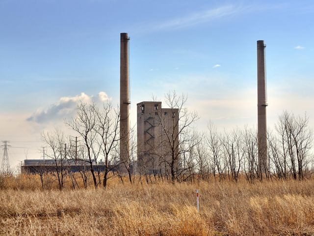 Prairie plants and trees in autumn, with a power plant behind them.