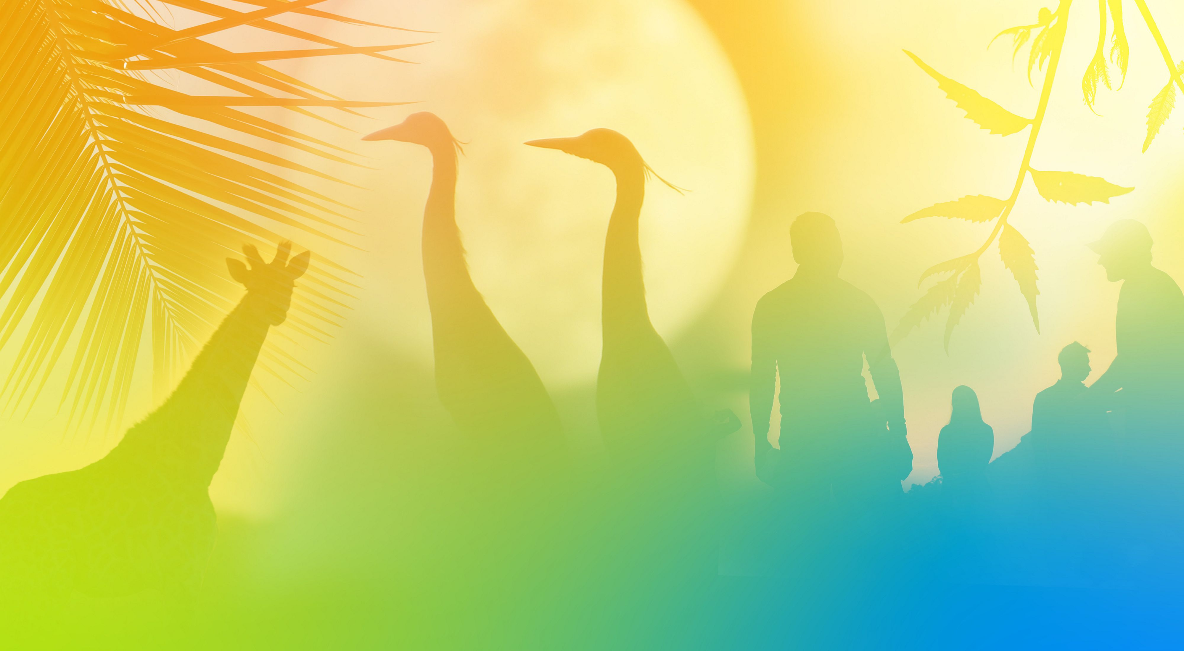 a collage of silhouetted animal, plant and people photos with a gradient overlay of green, orange, and yellow