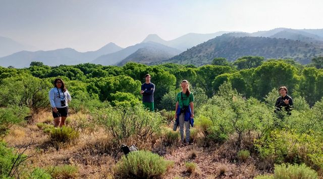 Four people stand socially distanced among shrubs with mountains in the background.