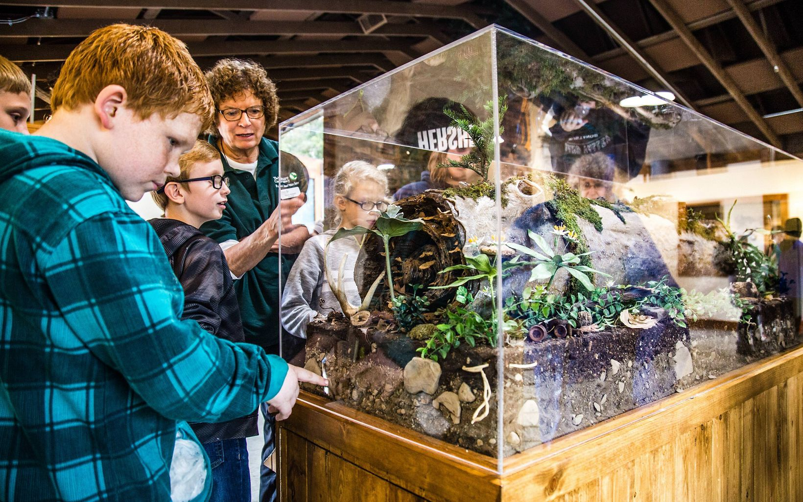 Boy with red hair and blue plaid shirt looks into a glass terrarium that shows a rotting log and a look at the soil underneath it, along with organisms that like that habitat.