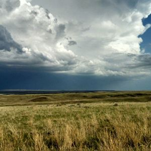 Protecting Our Prairies