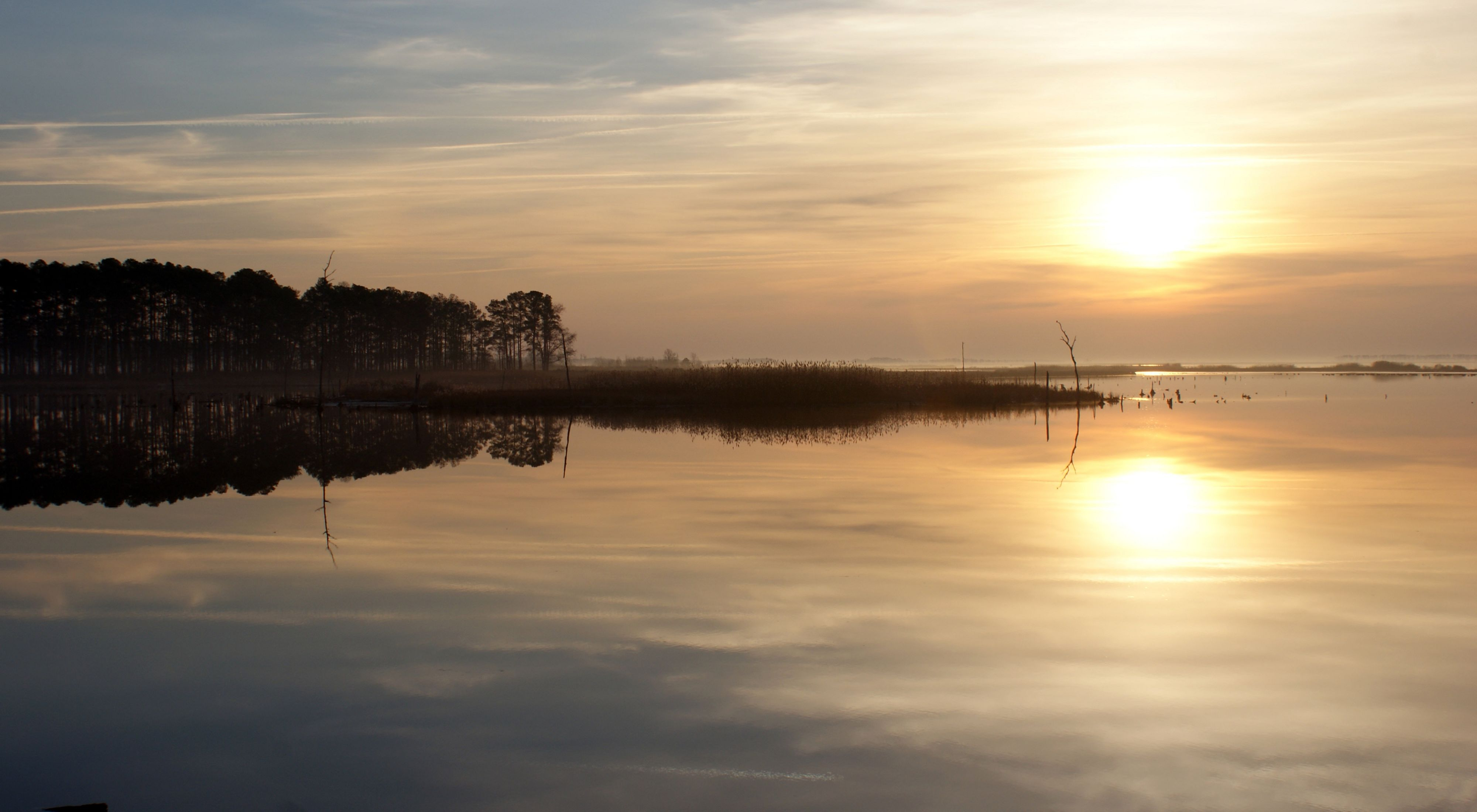 The setting sun and tall pine trees are reflected in the calm water of the Blackwater River.
