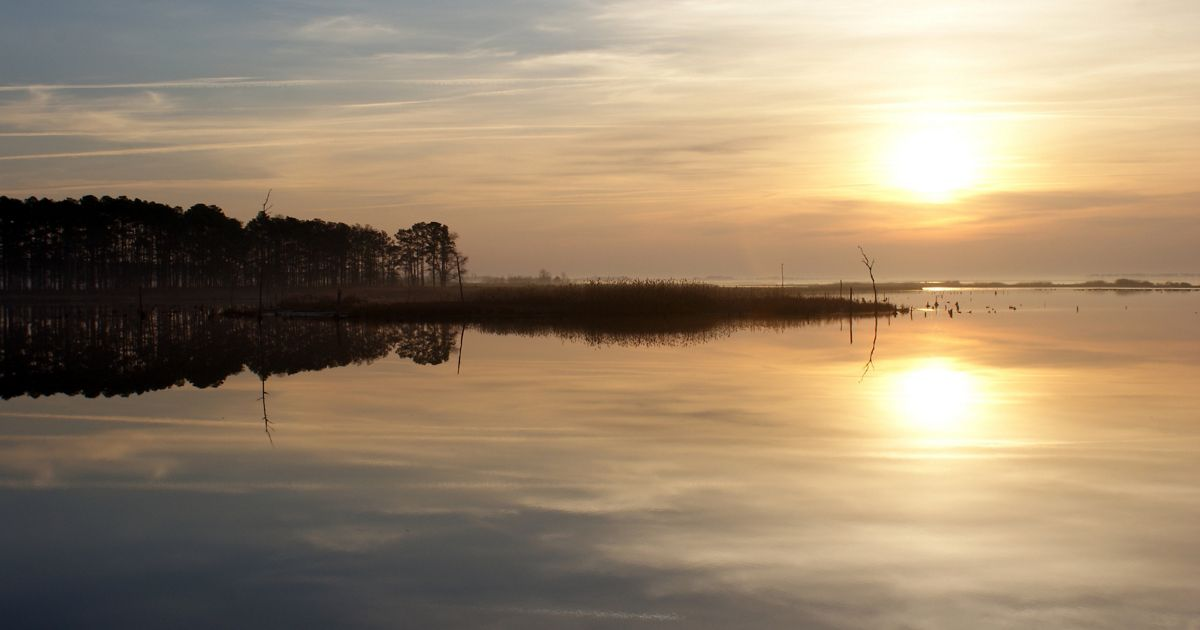 Blackwater National Wildlife Refuge contains one-third of Maryland's tidal wetlands, which provide storm protection to lower Dorchester County.
