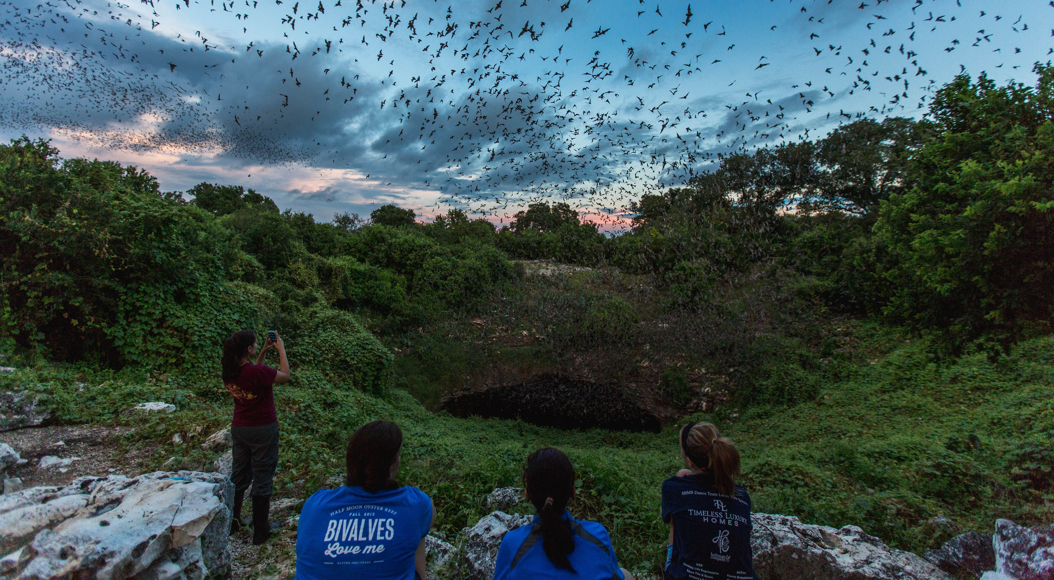 Thousands of bats emerge from a dark cave entrance surrounded by vines as a group of people watch ant take photos.