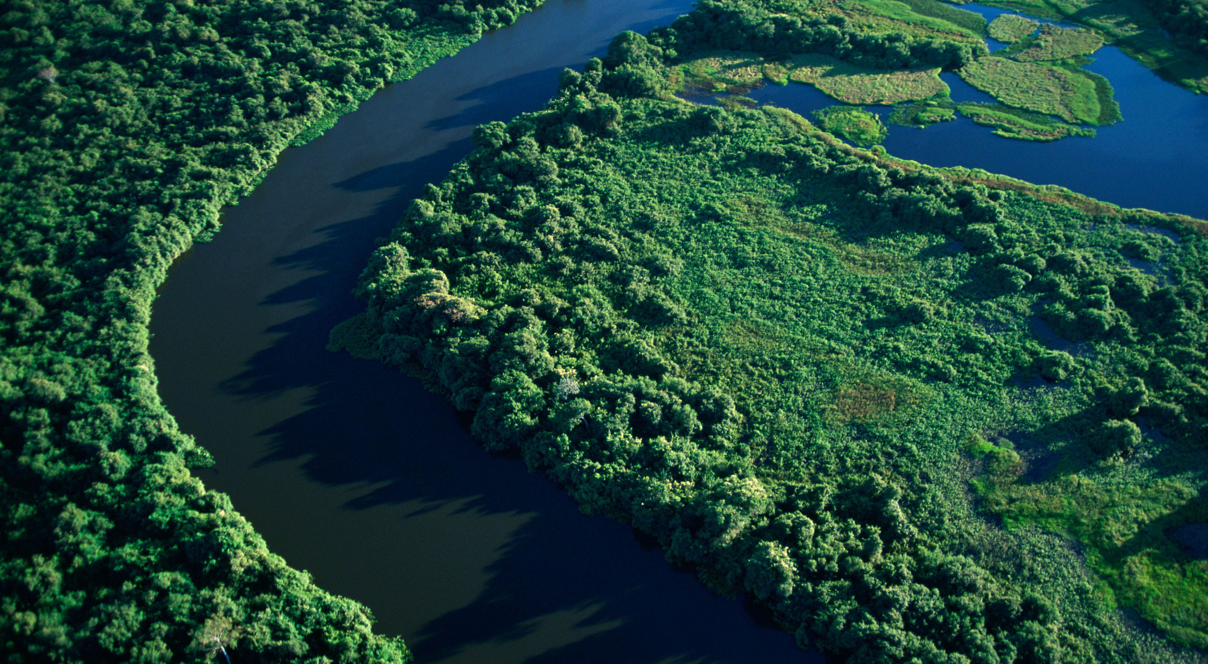 Aerial view of Cuiab River crossing the Pantanal National Park in Brazil.