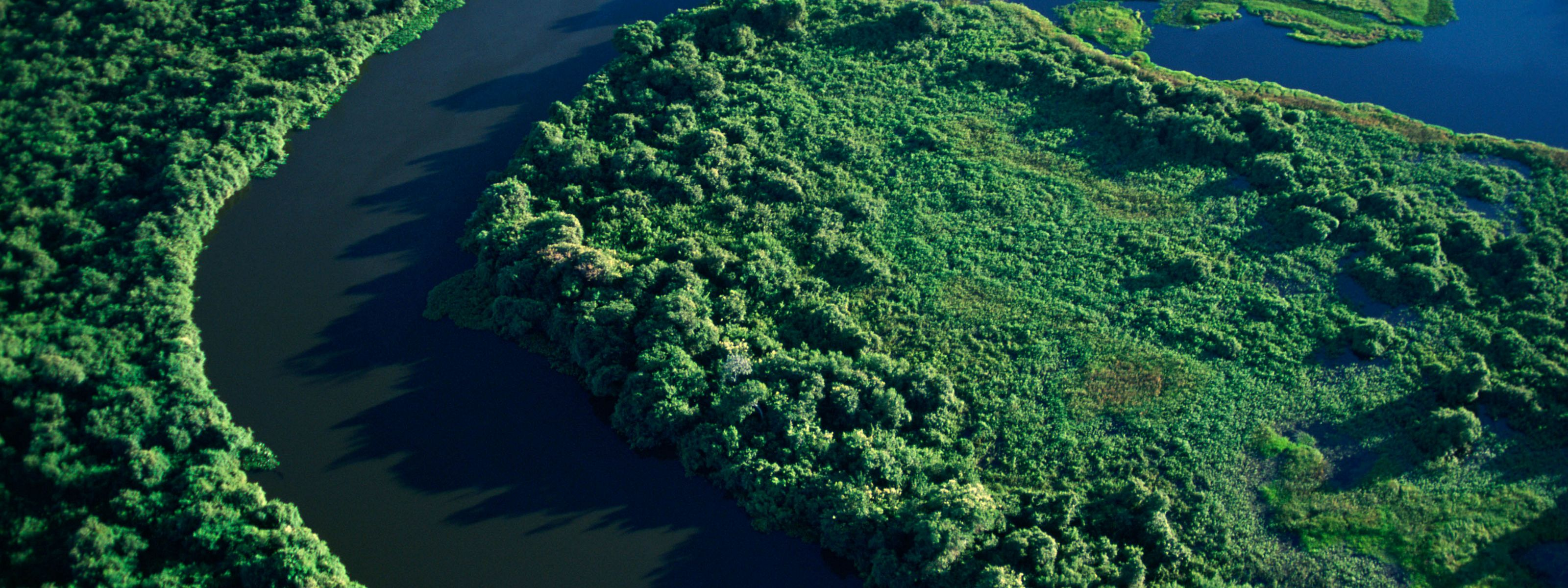 Pantanal National Park in Brazil.