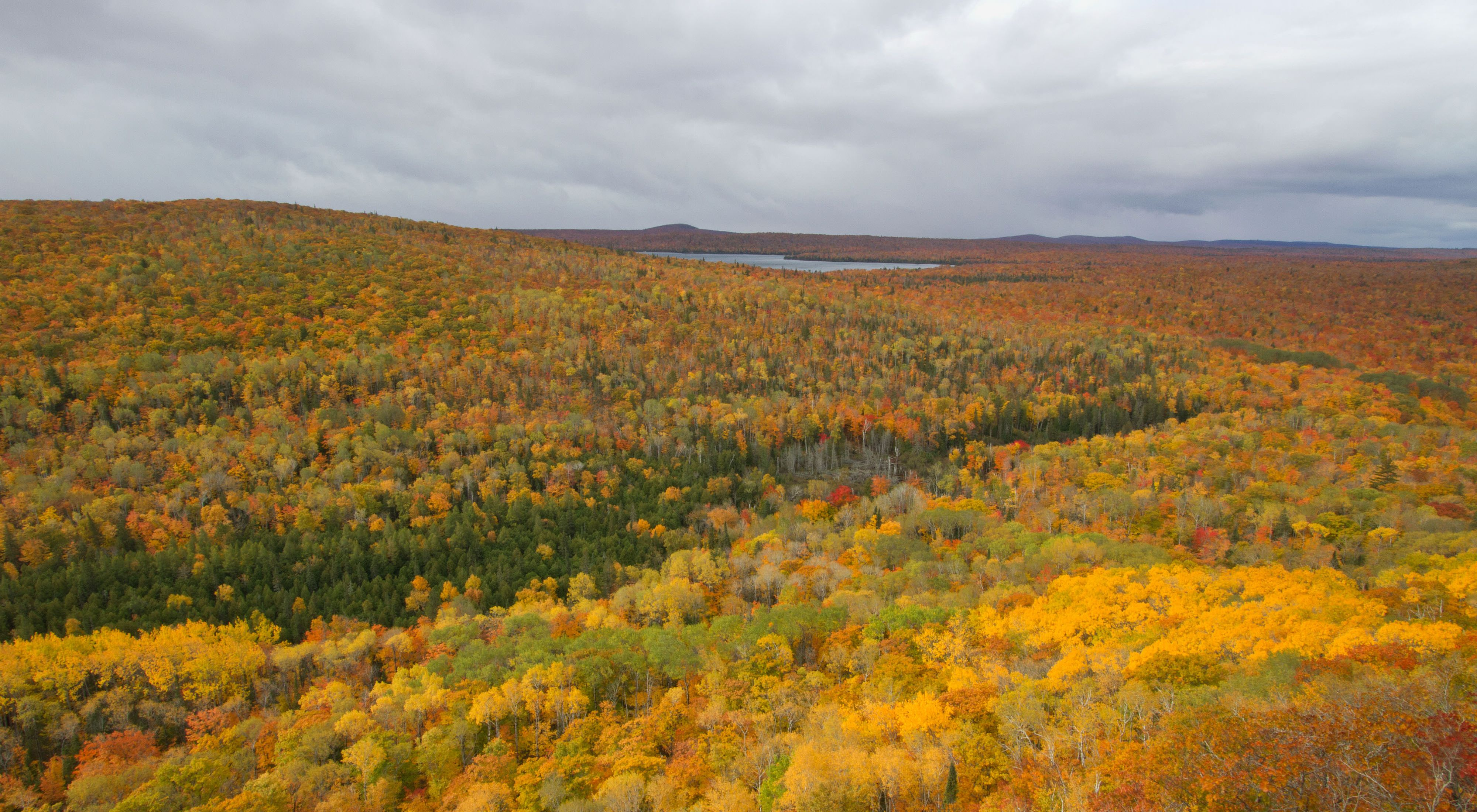 View from the summit of Brockway Mountain of  Michigan's Upper Peninsula forests in peak fall colors.