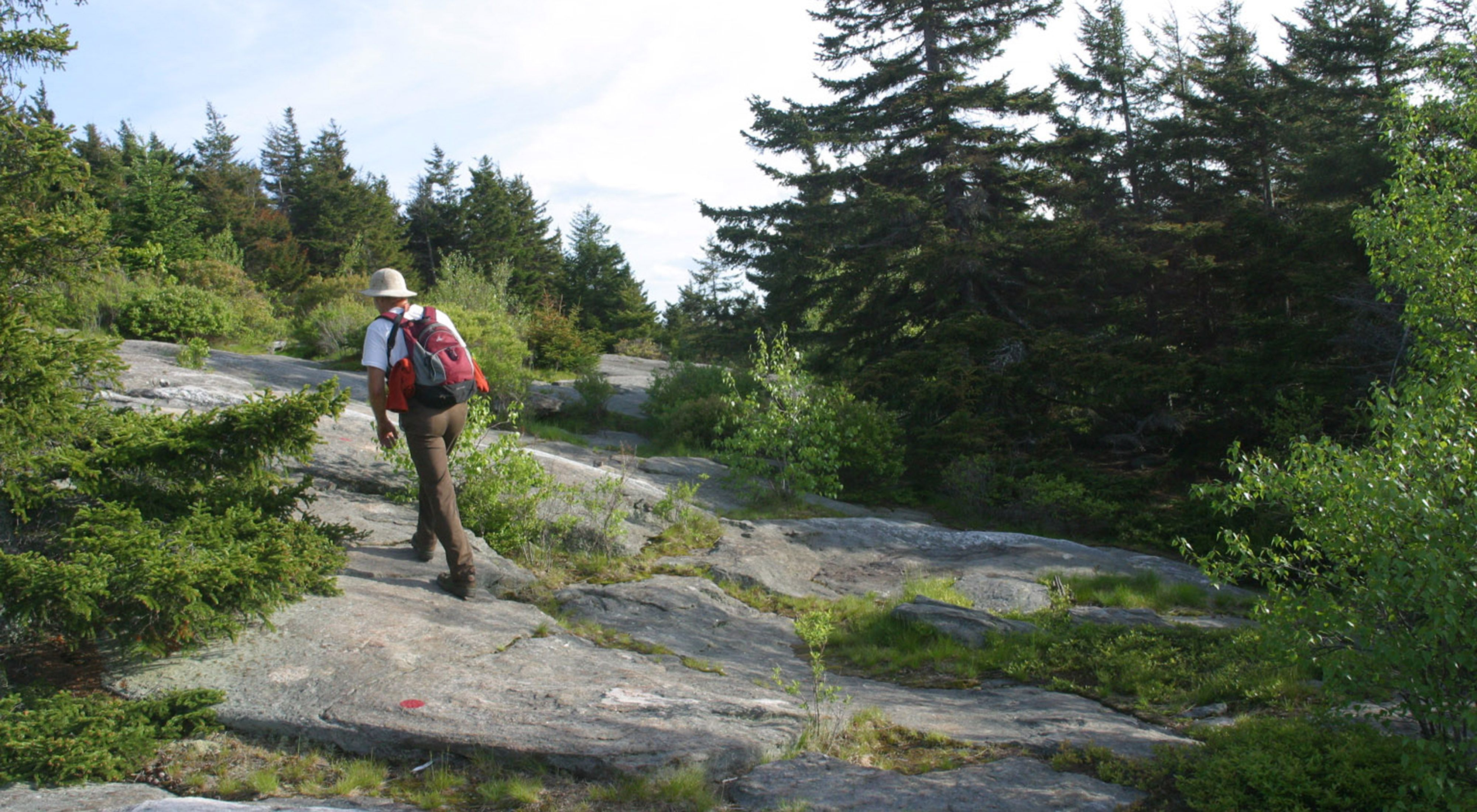 A hiker makes his way to the summit of Pack Monadnock at the Joanne Bass Bross Preserve in Peterborough, New Hampshire