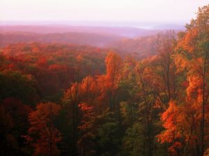 Fall foliage in the Brown County Hills, Indiana
