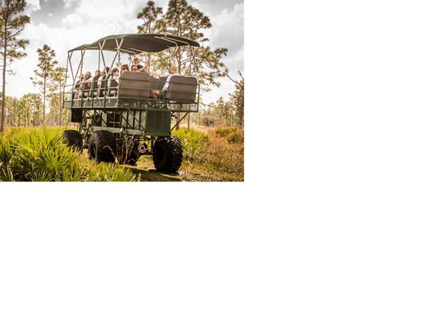 A buggy carries trip-goers through The Nature Conservancy's Disney Wilderness Preserve.