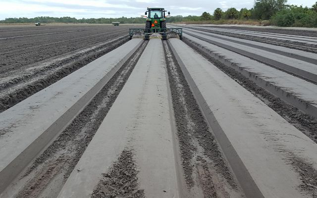 A tractor prepares neat beds of soil destined to be planted with cabbage.