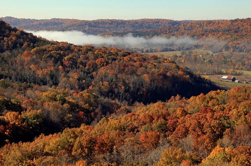 A bird's eye view of bronze, red, orange and yellow fall foliage covering the forested hillsides with a green valley below.