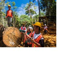 The Nature Conservancy's deforestation initiatives in East Kalimantan, Indonesia.