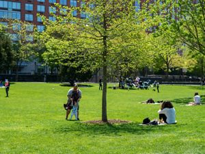 A sunny day in Hudson River Park