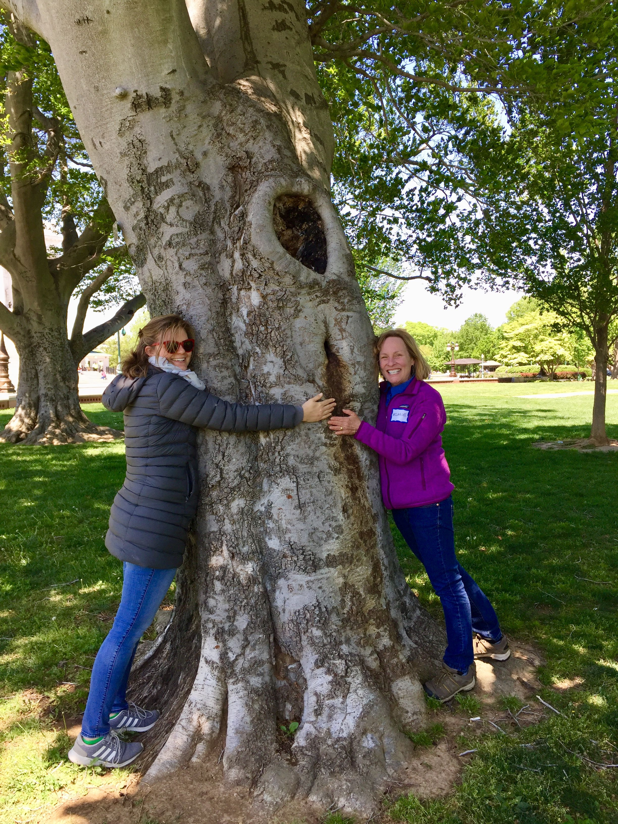 Two women stand on opposite sides of a large tree trunk, smiling and posing while hugging the tree.