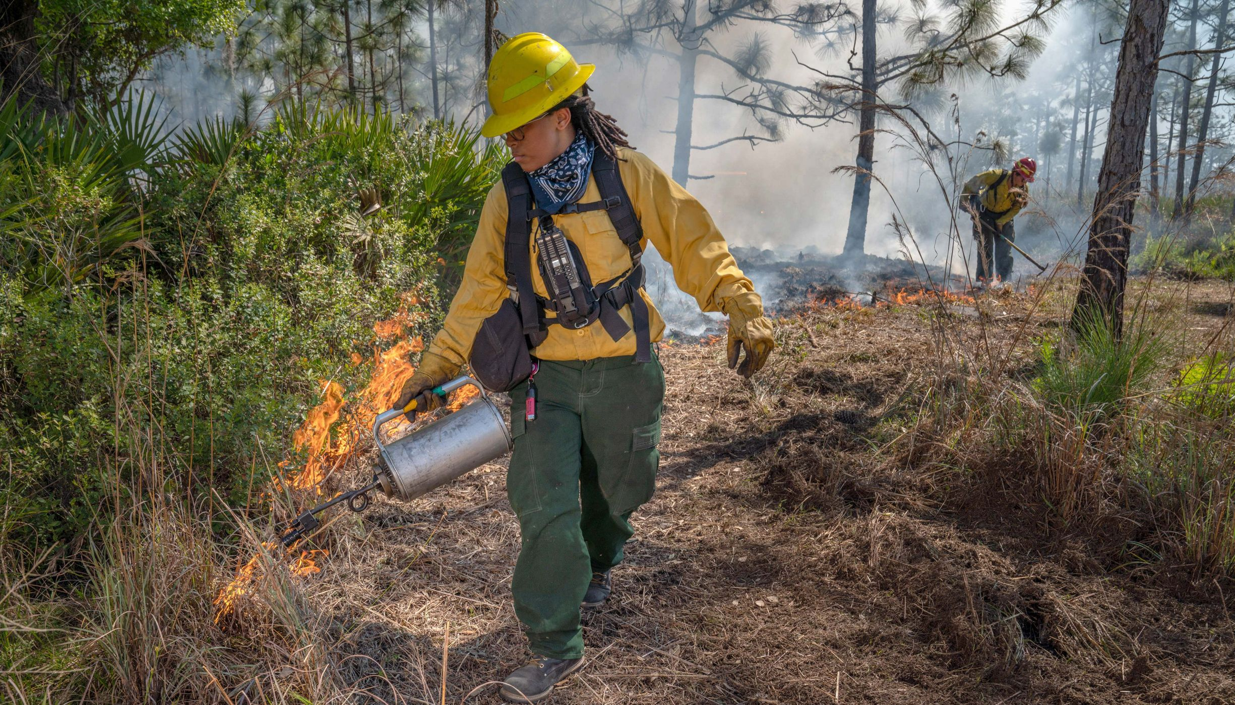 A woman uses a drip torch during a TNC controlled burn.