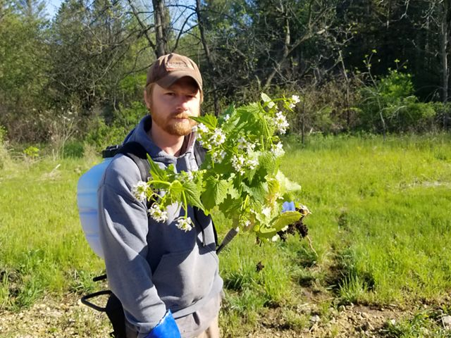 Caleb Klima stands, frowning, holding a bunch of green garlic mustard stems with small white flowers at the tip.